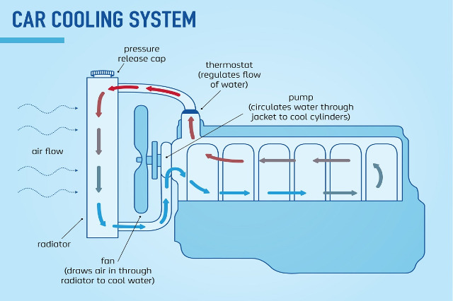 working-of-engine-cooling-system.jpg