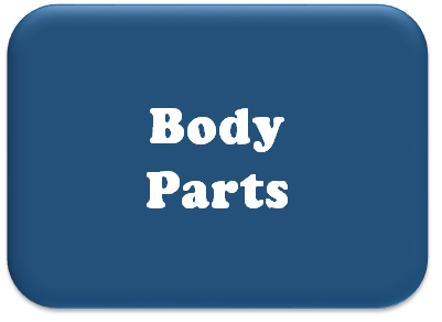 Body panels and parts