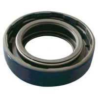 Diff Pinion Oil Seal (Type 2)